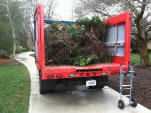 Tree Brush Disposal Indianapolis