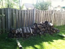 Timber and Tree Limb Removal Indianapolis