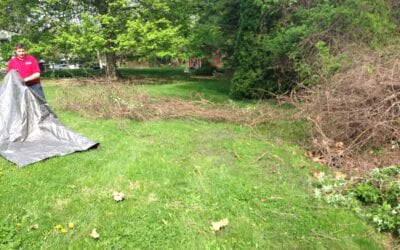 Brush Pile Removal in Indianapolis
