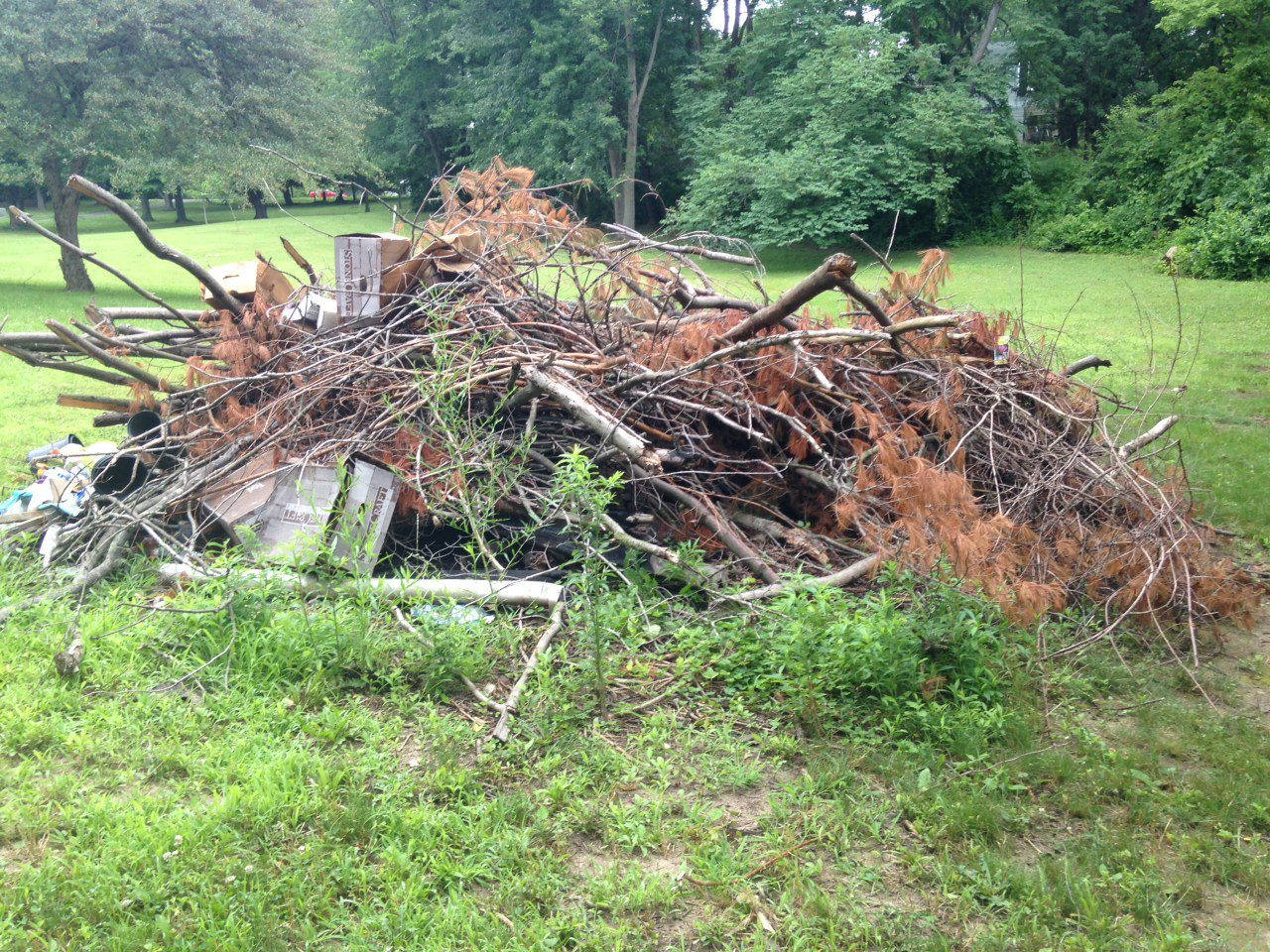Brush Removal Greenwood IN