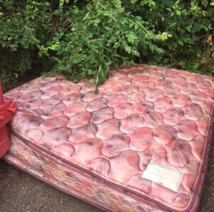 Where to Dispose of a Mattress with Bed Bugs