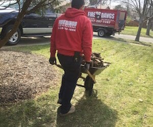 Spring Clean Up Indianapolis