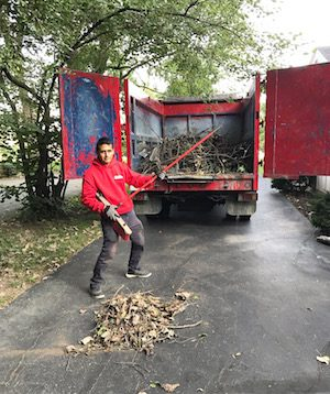 Who Hauls Away Brush in Indianapolis?