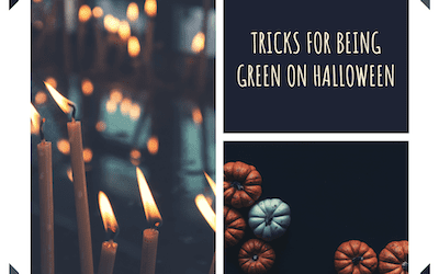 Tricks for Being Green on Halloween