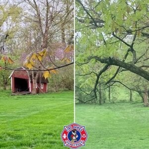 Mini Barn Removal in Indianapolis Before and After Picture