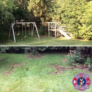 how much does swing set removal cost
