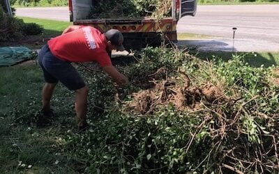 Yard Waste Removal Fort Wayne