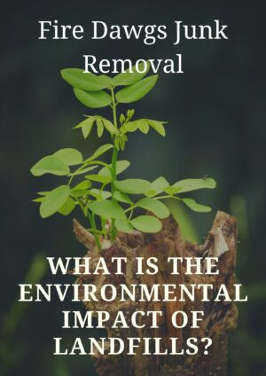 What is the environmental impact of Landfills?