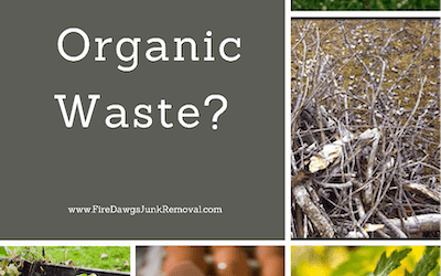 What is Organic Waste?